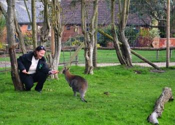 New animal curator