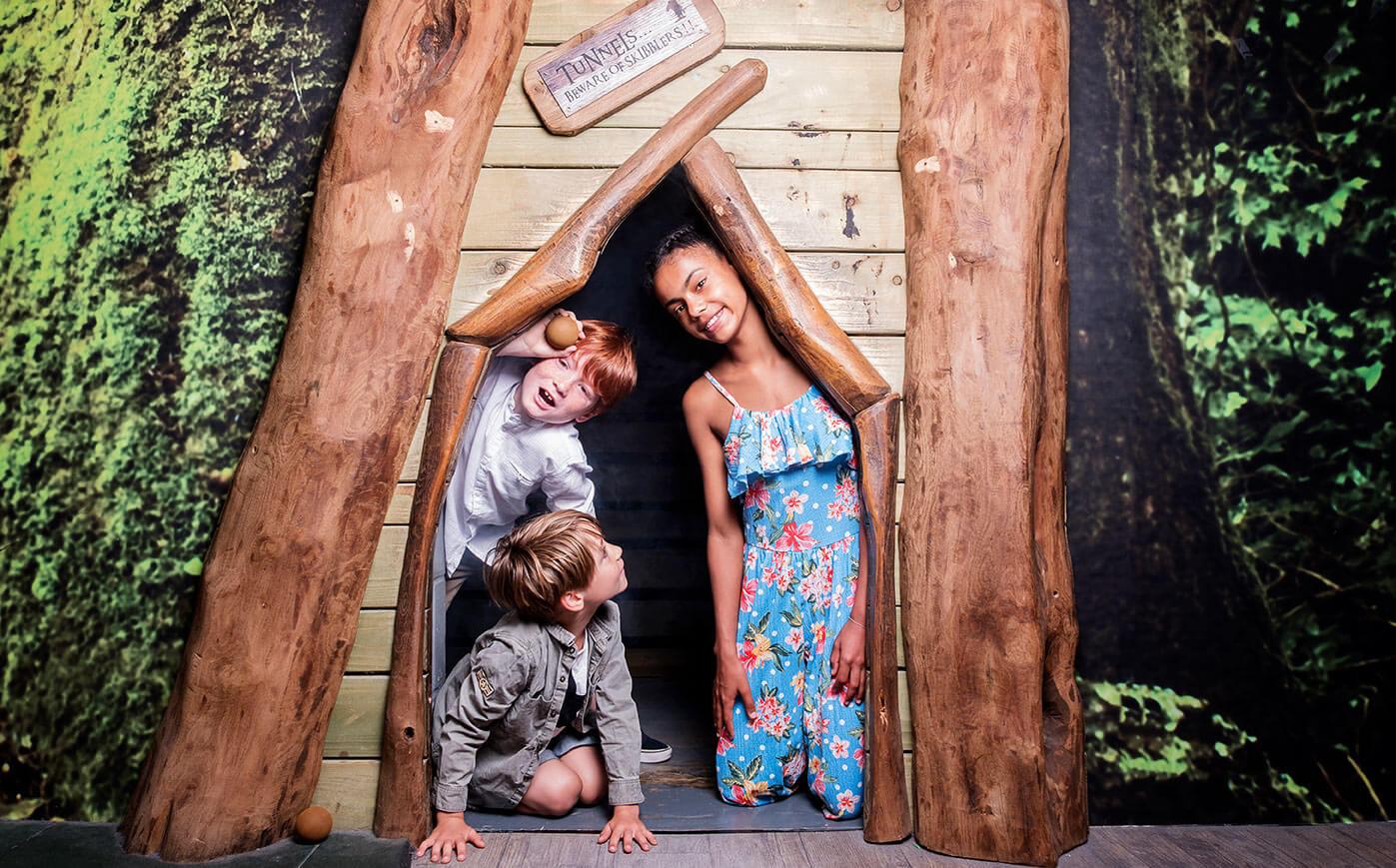 The Playbarn at Hobbledown